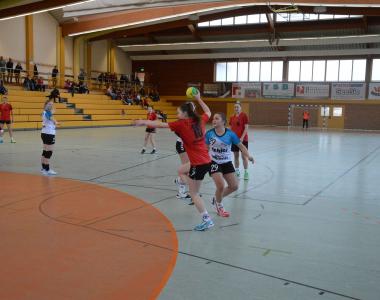 2019-02-10 Damen II – HSG Lauingen-Wittislingen II 14:8