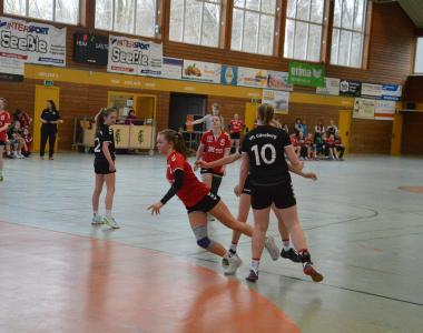 2019-01-27 wB – VfL Günzburg 23:16