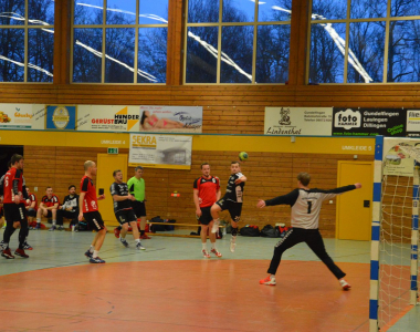 2019-02-10 Herren I – TSV Haunstetten III 29:21